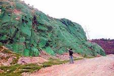 中国の緑化作業